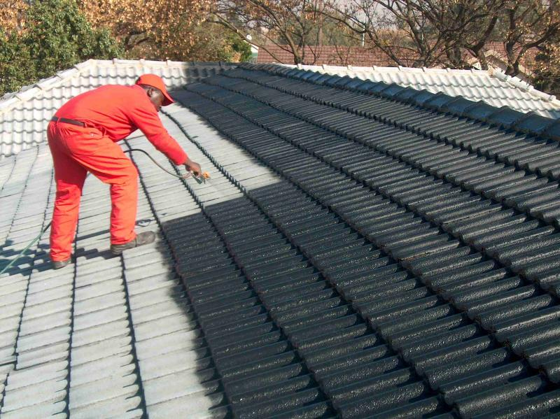 Tag Roof Painting Services Cape Town